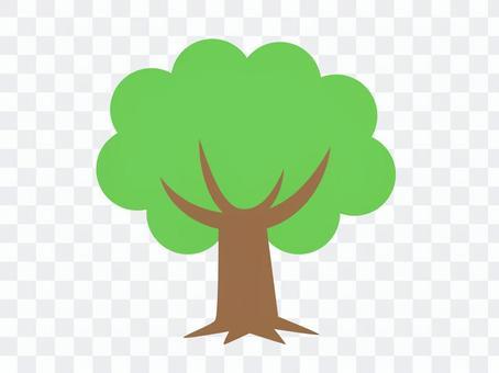 樹(新鮮的綠色)