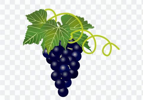 美味的葡萄1