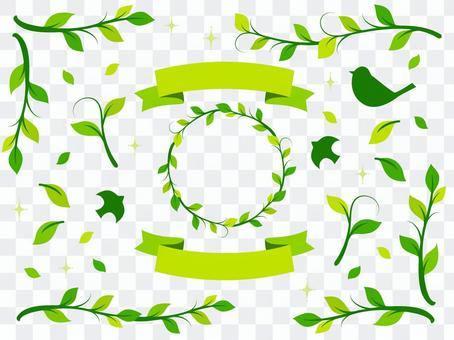 植物插圖素材(7)