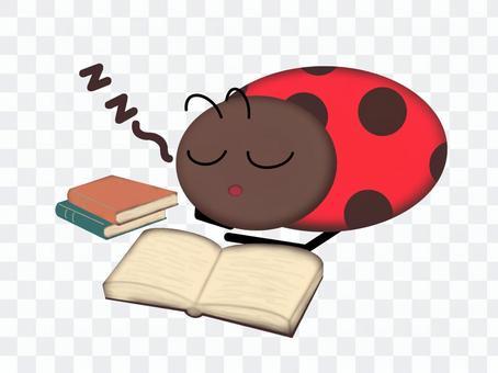 瓢蟲在閱讀時睡覺