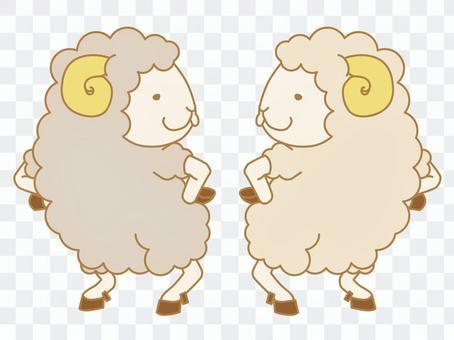 Peeling sheep