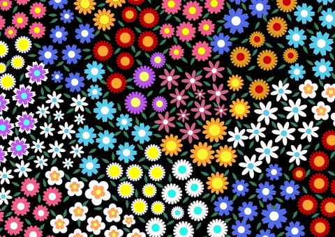 Lively pedicel colorful black background