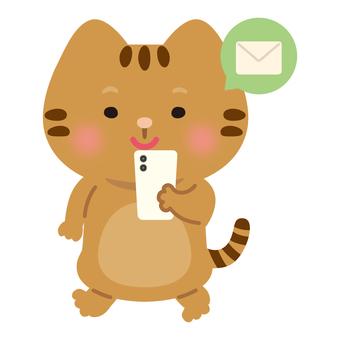 Cat (email)