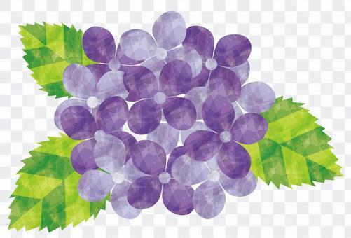 繡球花/紫色