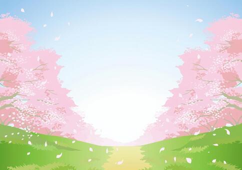 櫻花材料8