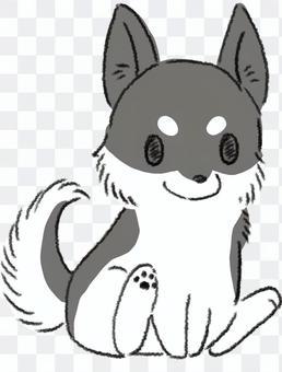 沙啞的小狗