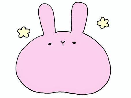 大兔子1的2