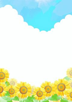 柔和的顏色向日葵背景5