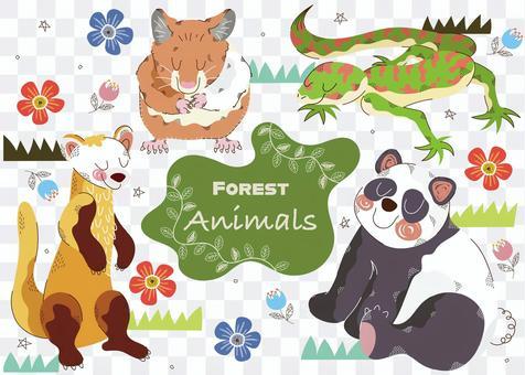 森林動物套裝11