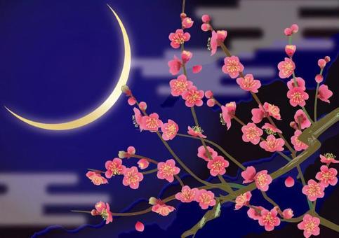 Red plum in crescent moon