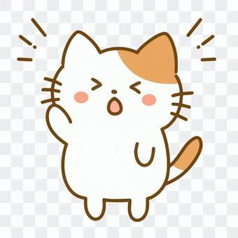 貓舉起一隻手(麻煩的臉)