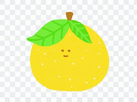 水果柚子柚子水果