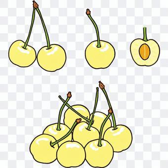 黃櫻桃截面