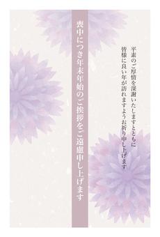 在哀悼菊花的明信片
