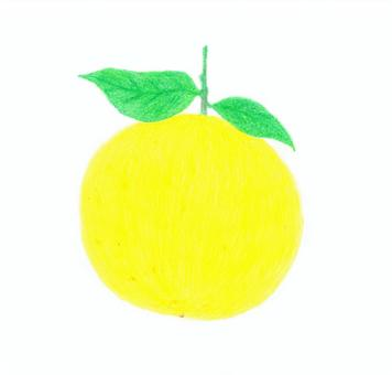 Summer turkan (color pencil)