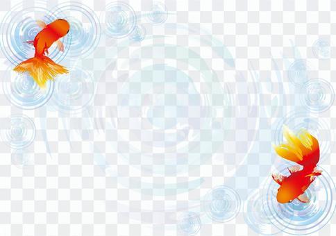 Illustration goldfish summer festival early summer frame japanese style ripple blue