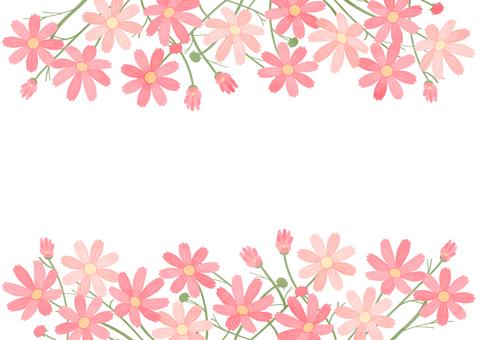 波斯菊盛開的秋季裝飾框
