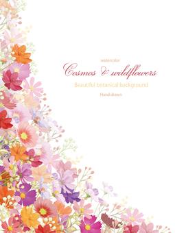 波斯菊和野花垂直水彩框架