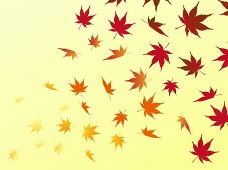 日本風格的材料秋天的樹葉背景楓葉