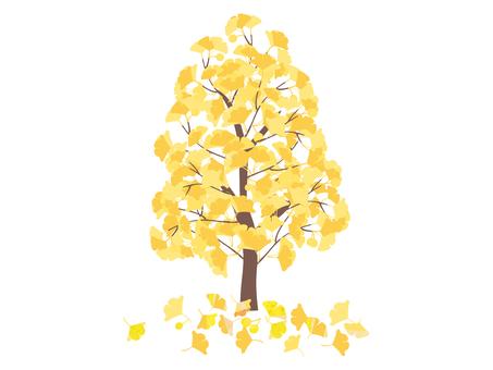 銀杏樹和落葉