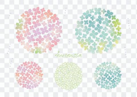 繡球花【漸變】0517