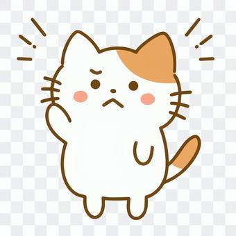 貓舉起一隻手(生氣的臉)