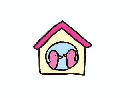 Bird's nest box