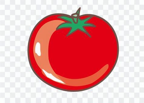 蕃茄的例证
