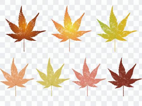 가을 잎 4