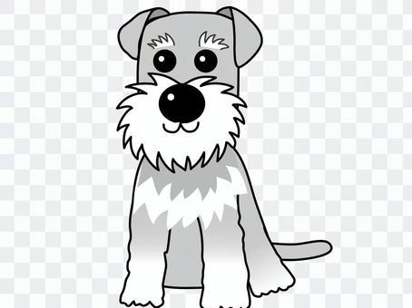Schnauzer - the world's dog