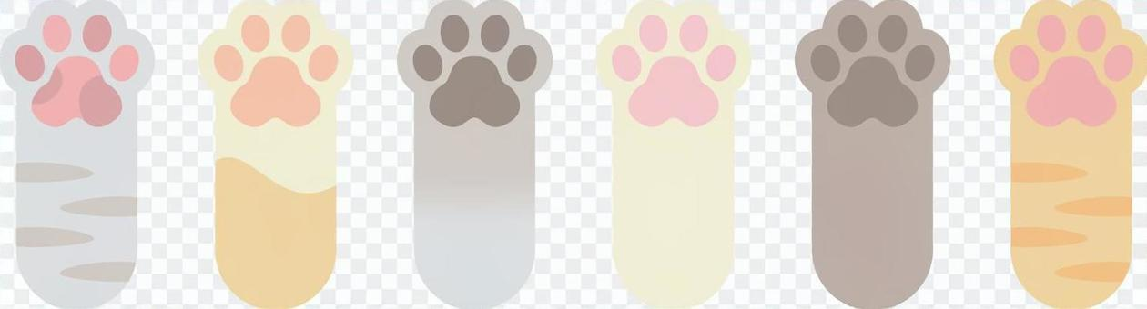 各種貓的爪子