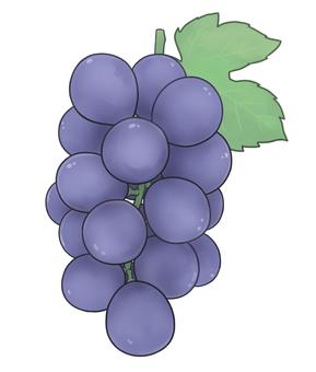 葡萄(帶葉)