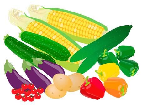一組新鮮的夏季蔬菜的插圖