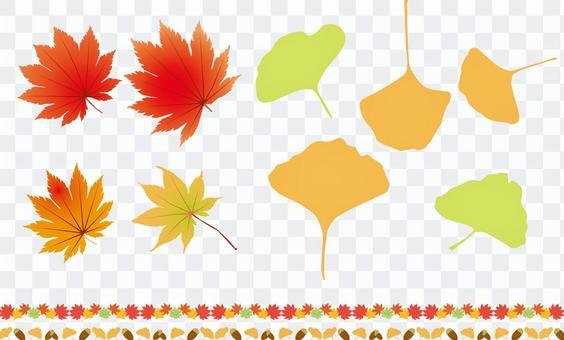 秋葉,銀杏和橡子