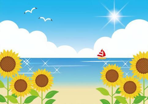 向日葵和海