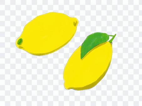 簡單的檸檬輪廓線
