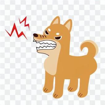吠犬、狂犬病等的圖像。
