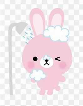 Battle rabbit shower