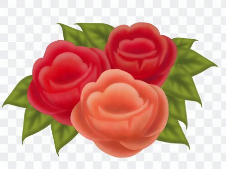 Rose ②