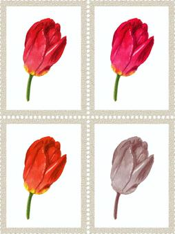 模擬水彩鬱金香4色郵票框