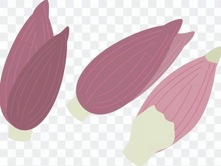 食品系列蔬菜姜