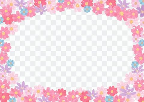 花材076波斯菊框架