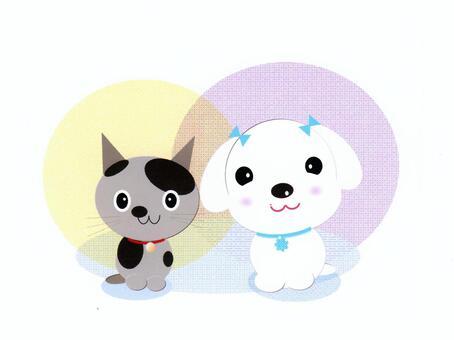 多摩和小丸是好朋友!