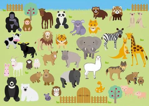 動物園の動物たち