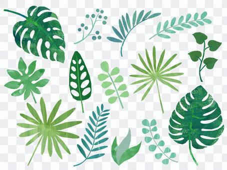 Tropical leaf material