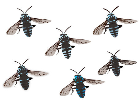 Blue bees carrying happiness