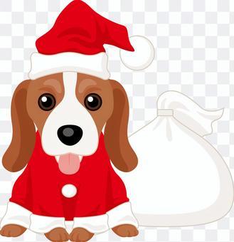 聖誕老人在比格犬
