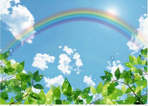 Fresh green, blue sky and rainbow
