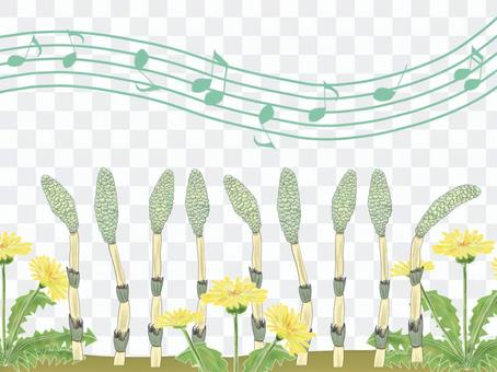 唱歌的春天(馬尾和蒲公英的插圖)