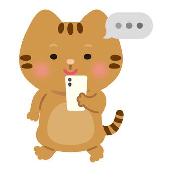 Cat (smartphone / chat)